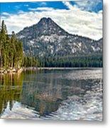 Panoramic View Of Anthony Lake Metal Print