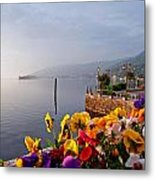 Pansies On Lake Maggiore Metal Print