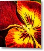 Pansy Flower 5 Metal Print