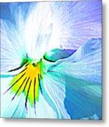 Pansy Flower 6 Metal Print