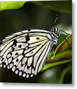 Paper Kite Butterfly On A Leaf  Metal Print