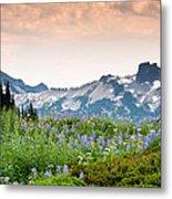 Paradise Meadows And The Tatoosh Range Metal Print