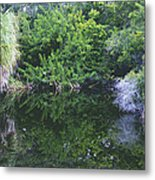 Paradise Pond Metal Print