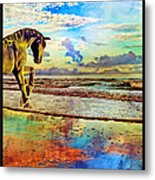 Paradise Sunset Metal Print by Betsy Knapp