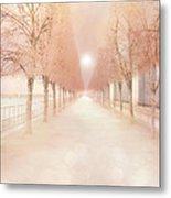 Paris Tuileries Row Of Trees - Paris Jardin Des Tuileries Dreamy Park Landscape  Metal Print