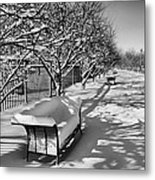 Park Benches Snow Upholstered Metal Print