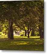Park By The Rivers Metal Print
