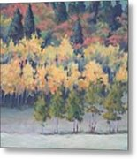 Park City Meadow Metal Print