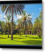 Park Open Area 2 Metal Print