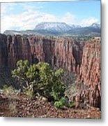 Parker Canyon In The Sierra Ancha Arizona Metal Print
