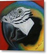 Parrot 1 Metal Print