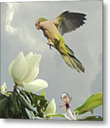 Parrot And Magnolia Tree Metal Print