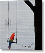 Parrot On A Swing Metal Print