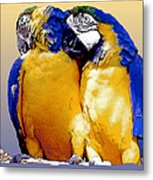 Parrot Passion 1 Metal Print
