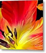 Parrot Tulip On Fire Metal Print