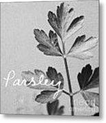 Parsley Metal Print
