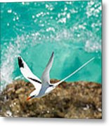 Parting Waves Metal Print