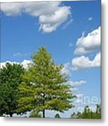 Partly Cloudy Day Metal Print