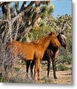 Partners - Wild Horses Metal Print