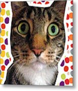 Party Animal- Cat With Confetti Metal Print