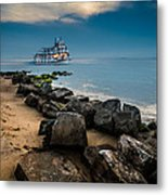 Party Cruise Metal Print