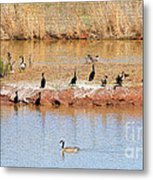 Party Island Metal Print