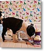Party On Puppy Metal Print