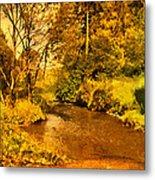 Passage Down The River Metal Print