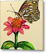 Passion Butterfly On Zinnia Metal Print