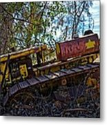 Past It's Prime Metal Print