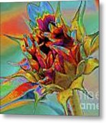 Past Summers Metal Print