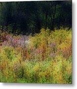 Pastel Field Metal Print