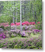 Pastel Forest Metal Print