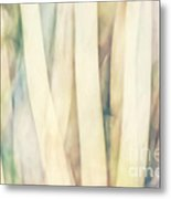 Pastel Forest Wild Grasses Photographic Abstract Metal Print