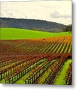 Pastoral Vineyards Of Asti Metal Print