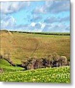 Pasture Land - Dorset Metal Print