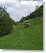 Pasture Land At Ashford-in-the-water Metal Print