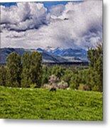 Pastures And Clouds  Metal Print