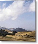Pastures Of Heaven Metal Print