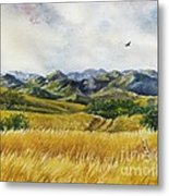 Patagonia Just Down The Valley Metal Print by Summer Celeste