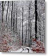Path In A Forest In Winter In The Countryside  In Denmark Metal Print