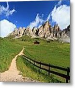 path in Gardena pass Metal Print