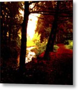 Into The Morning Light Metal Print
