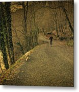 Path Iv Metal Print