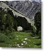 Path Of Life Ruby Mountains Stock Trail Metal Print