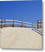 Path Of Tranquility Metal Print