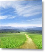 Path Through Field Leading To Distant Metal Print
