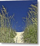 Path Through The Dunes Metal Print