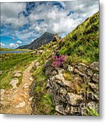 Path To Lake Idwal Metal Print by Adrian Evans