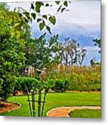 Path To Marshes Metal Print